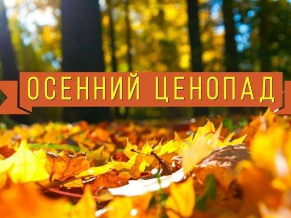 -50 рублей на обучение по подготовке водителей категории «В»